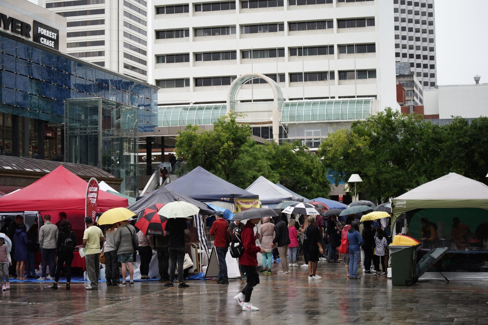 Image depicting crowds with umbrellas at a very wet World Vegan Day event.